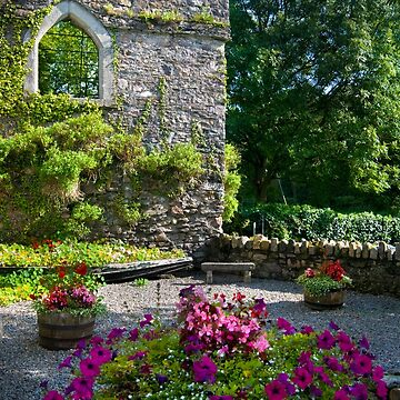 A colourful nook, Inistioge, County Kilkenny, Ireland by AndyJones