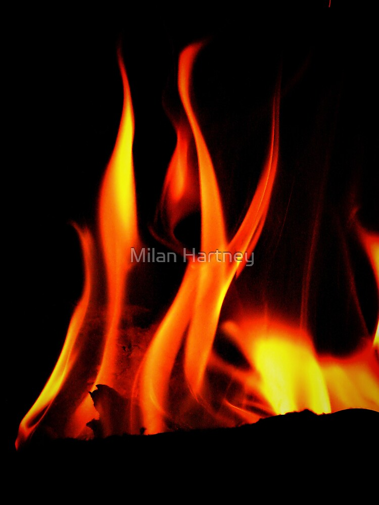 Flames by Milan Hartney