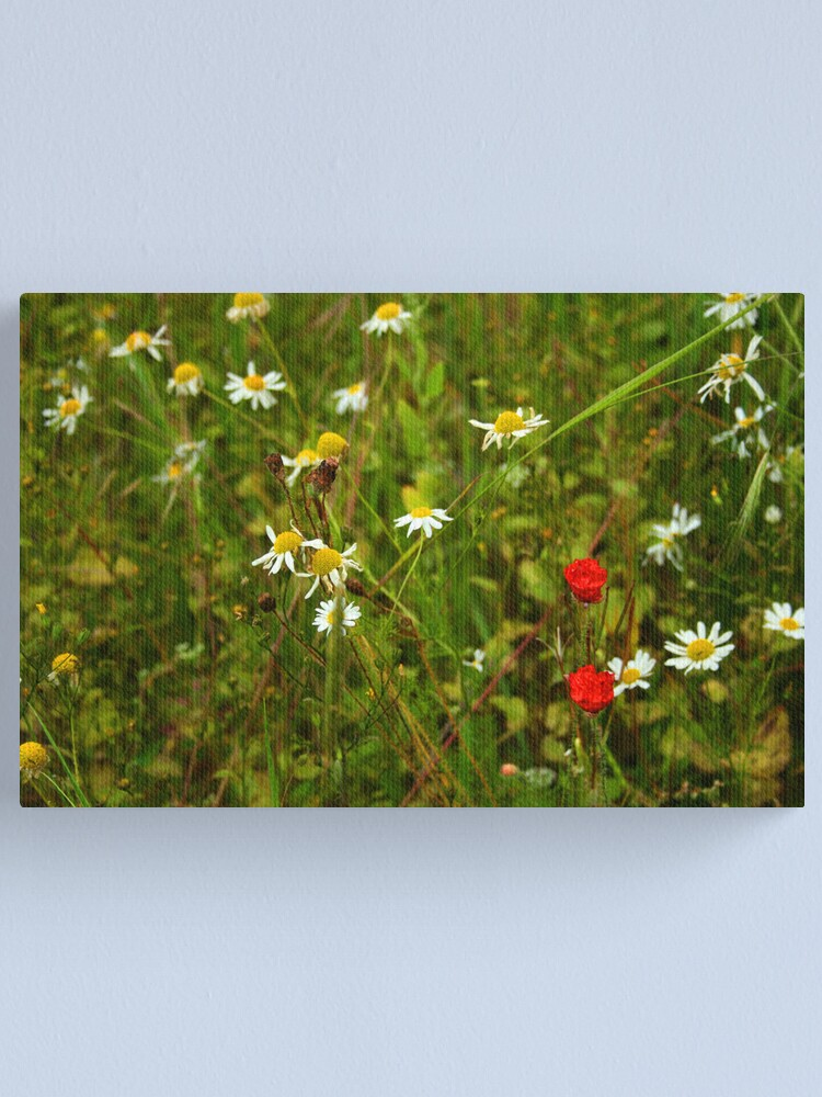 Alternate view of Wild Flowers in the Meadow Canvas Print