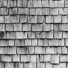 SHELTER / 2 von Daniel Coulmann