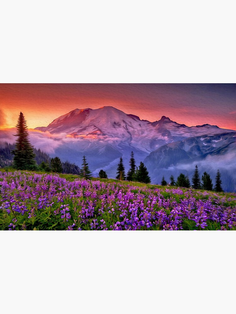 Washington, Mt Rainier National Park  by ErianAndre