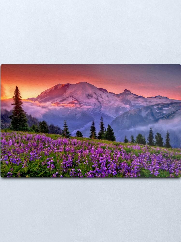 Alternate view of Washington, Mt Rainier National Park  Metal Print