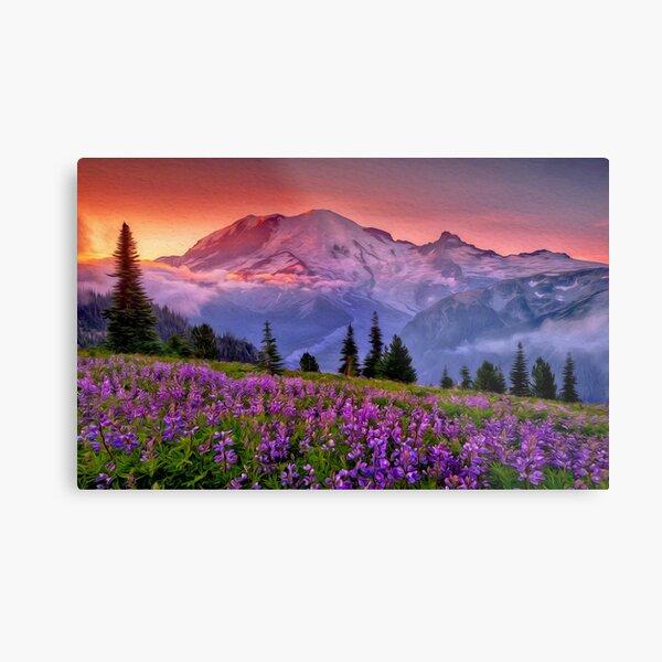 Washington, Mt Rainier National Park  Metal Print