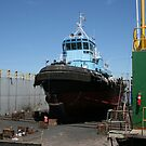 Towboat Dry Dock by Jim Roche