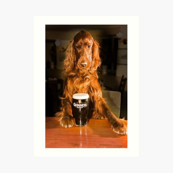 Irish seter with pint of stout Art Print