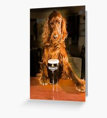 Irish seter with pint of stout Greeting Card