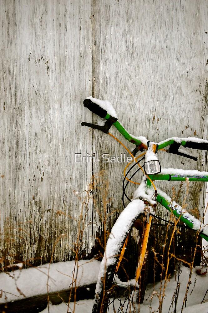 Waiting for Spring by Erin  Sadler