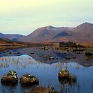 Blackmount  Mirror 22 by Alexander Mcrobbie-Munro