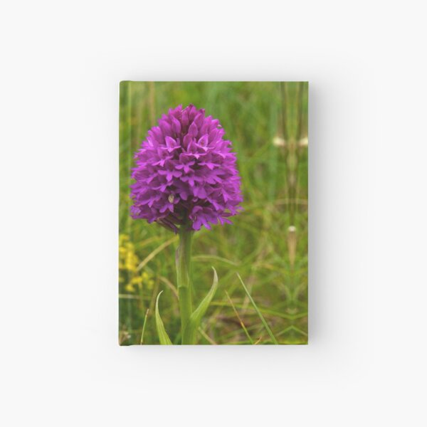 Pyramidal Orchid - iPhone Case Hardcover Journal