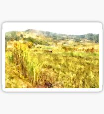 Field with horse Sticker