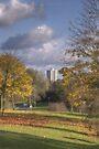 Autumn in the Pinnacles by Nigel Bangert