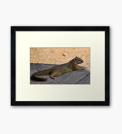 WOW...... WHAT A DAY! Framed Print