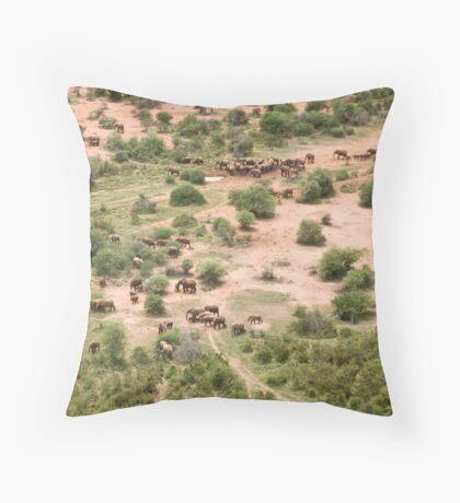 Elephants galore! Throw Pillow