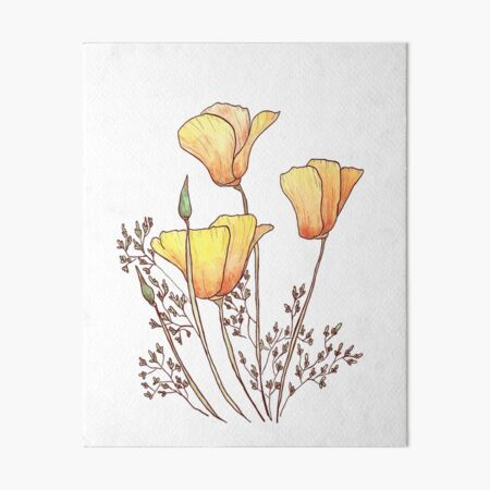 California Poppy Art Board Print