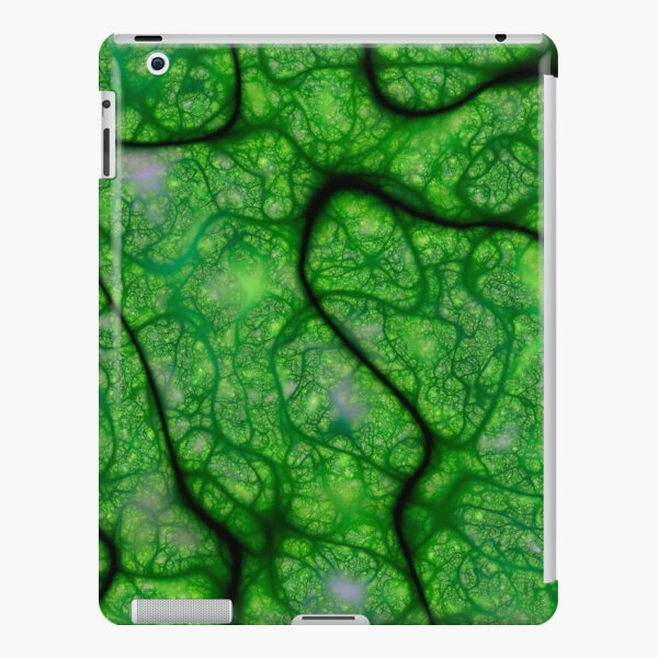 Rogues Gallery 8 iPad Snap Case