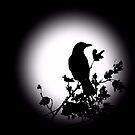Blackbird in Silhouette  by David Dehner