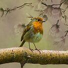 Redbreast Bird by David Dehner