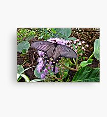 """Insects"" Canvas Print"
