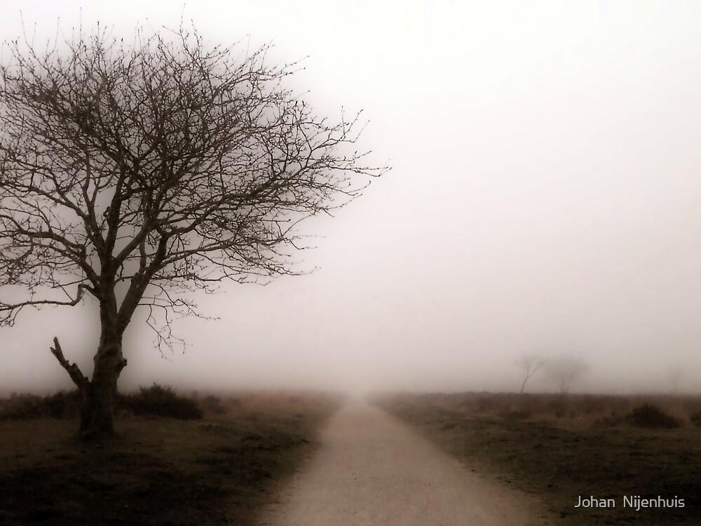 FOG AT THE FOCHTELOERVEEN by Johan  Nijenhuis