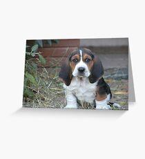 Shango puppy Greeting Card