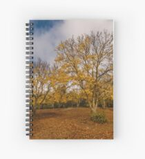 Autumnal Ash Spiral Notebook