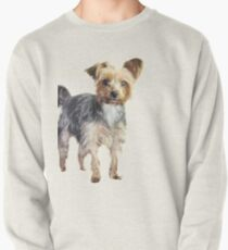 Yorkie on blue Pullover