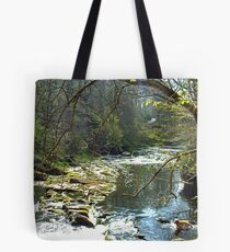 Let's get wet Tote Bag