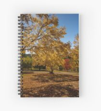 Autumn Sunshine Spiral Notebook
