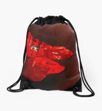 Red poppy 2 Drawstring Bag