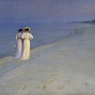 SUMMER EVENING ON SKAGENS SOUTHERN BEACH  by David Dehner