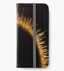 Nature Photography | Cactus and Sunset iPhone Wallet/Case/Skin
