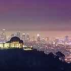 Los Angeles Cityscape by jswolfphoto
