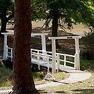 White Bridge by Ray Fowler