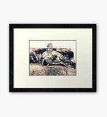 baxter. Framed Print