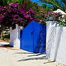 WALKING BY THE BLUE  GATE......! by vaggypar