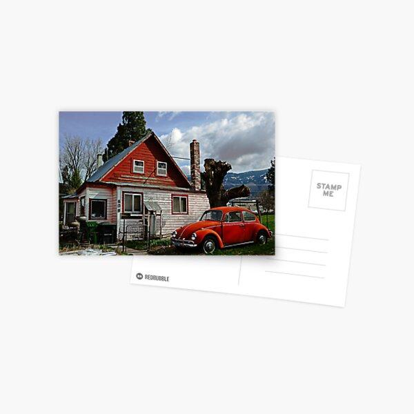 Bug on the Windshield Postcard