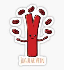 Funny Anatomy Jugular Vein Nurse Doctor Medical Student  Sticker