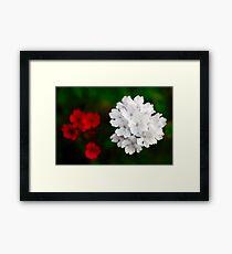 Flower image Framed Print