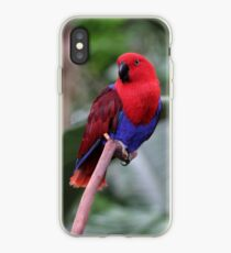 Ruby the Parrot iPhone Case