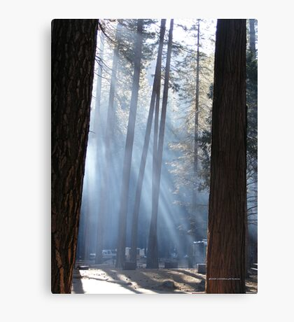 Campers Morning Smoke Through The Pines Canvas Print