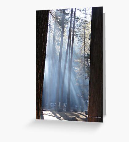 Campers Morning Smoke Through The Pines Greeting Card