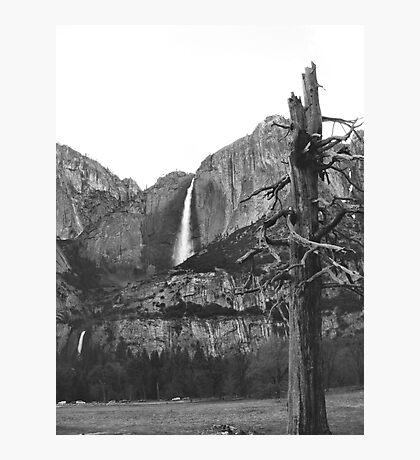 Upper & Lower Yosemite Falls (Black & White) Photographic Print