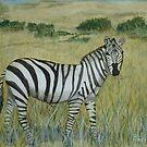 Savanna Zebra by BenPotter