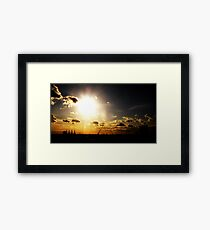i see the light..... Framed Print