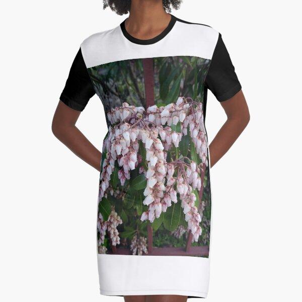 Untitled Graphic T-Shirt Dress