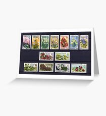 Falkland Islands Stamps Greeting Card