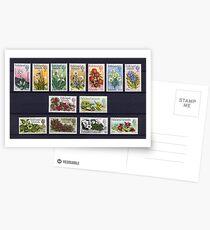 Falkland Islands Stamps Postcards