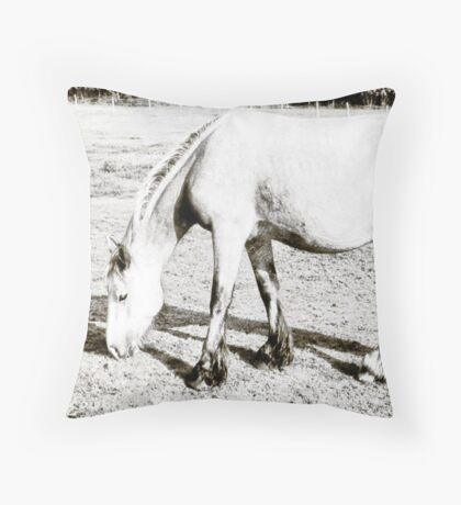 Summer feeding Throw Pillow