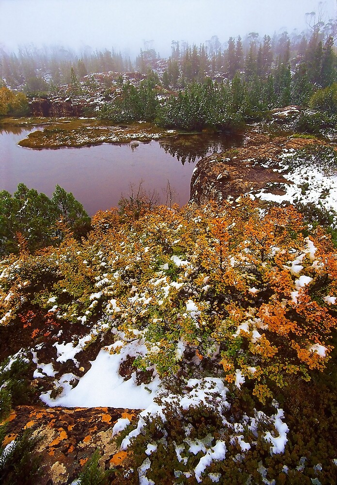 Autumn on The Labyrinth, Tasmania by Kevin McGennan