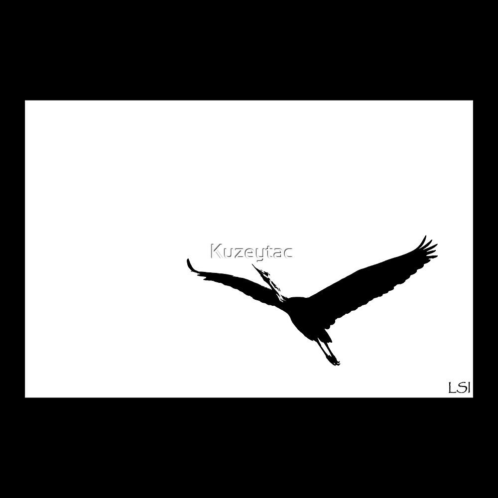 Freedom! by Kuzeytac